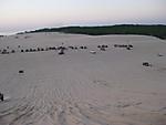 Dunes_209.jpg