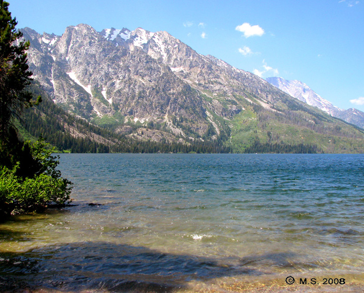 Jeep_in_Teton_Park_9_7-9-2008