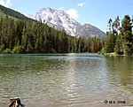 Jeep_in_Teton_Park_23_String_Lake_7-9-2008.jpg