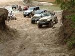Jeeps_006.jpg