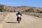Mojave_Road.jpg