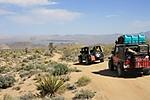 Mojave_Road_124.jpg
