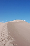 Path_up_Dunes.JPG