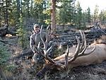 Yukon_Bull_Elk.jpg