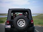 dogs_jeep_3.jpg