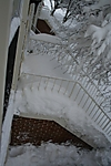 front_steps.jpg