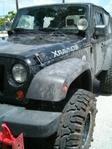 jeep_wtih_thorns_004.jpg