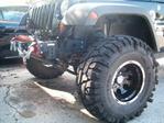 jeep_wtih_thorns_005.jpg