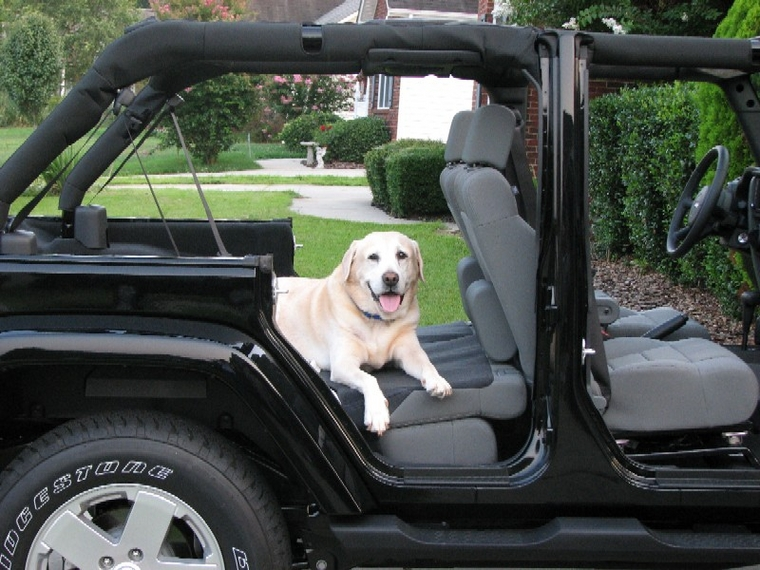 Gunner\u0027s Jeep! & Pic Request - 4-doors off and back seats down Pezcame.Com