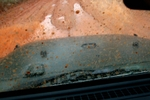Jeep_Mud_Trip_Apr_07_9473.jpg