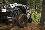 2008-06-15_Mud_Escorpions_312_Large_.jpg