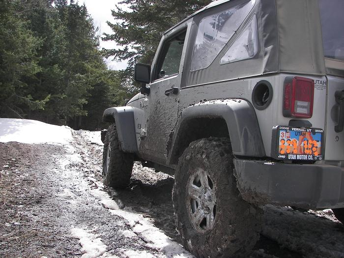 jeep_bruin_014