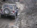 jeep_bruin_002.jpg
