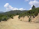 Main_Divide_Road_Trail_2.JPG